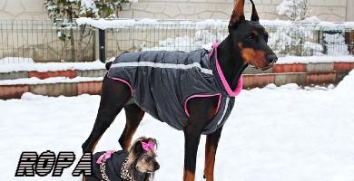 Ropa para perro de raza grande
