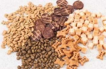 alimentos dañinos para perros